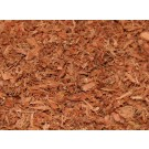 Acacia confusa Root Bark (Rainbow Tree)