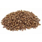 Hawaiian Baby Woodrose Seeds (Argyreia Nervosa)