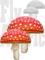 Amanita Muscaria Extract 10:1