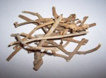 Silene Capensis - Xhosa Dream Herb (OUT OF STOCK)