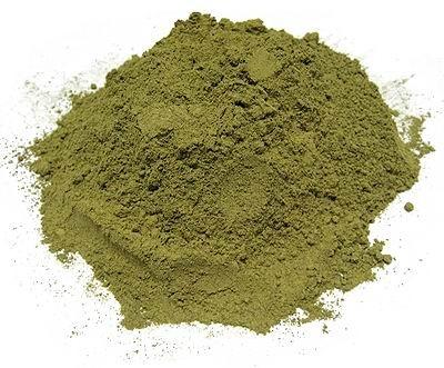 Green-Veined Borneo (GVB) Kratom :: Mitragyna speciosa