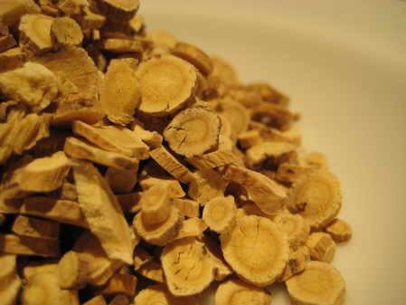 Astragalus Root :: Astragalus membranaceus