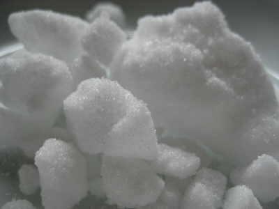 Camphor crystals :: Cinnamomum camphora