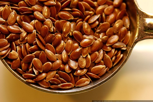 Flax Seed :: Linum usitatissimum
