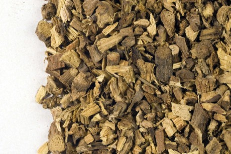Licorice Root :: Glycyrrhiza glabra
