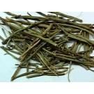Ma Huang :: Ephedra Sinica Seeds