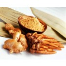 Ginger :: Zingiber officinale