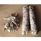 White Sage, Smudge :: Salvia apiana